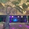 Salonul Grand - Magic Ballroom